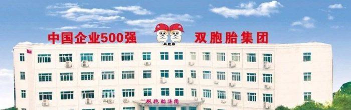 """练内功,提效率⎮中国500强双胞胎集团""""员工问询平台""""项目启动"""